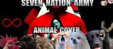 """Seven Nation Army"" – die 7 besten Coverversionen"